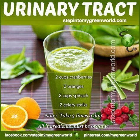 Detox For Urinary Infection by 17 Best Ideas About Urinary Tract Infection On