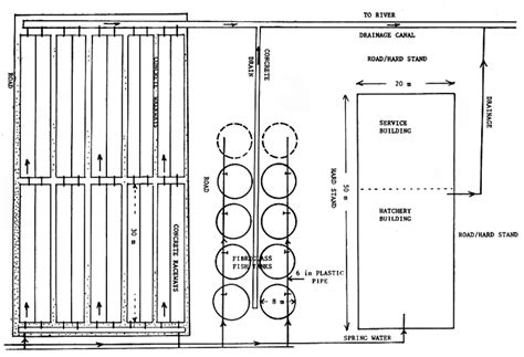 hatchery layout plan people s republic of china selection and planning of trout