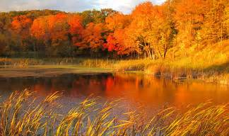 fall colors in dnr predicts spectacular fall color season news releases