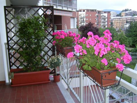 il balcone fiorito il di barbara il mio balcone fiorito