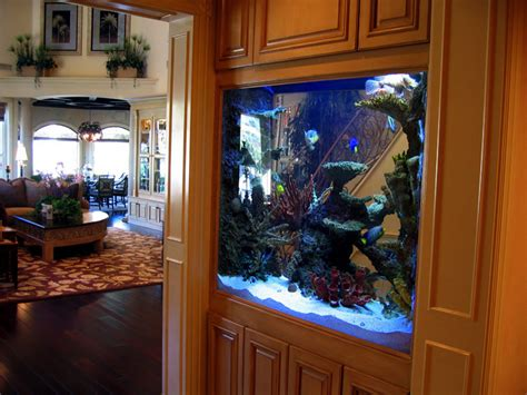 infinity aquarium design las vegas nv living reef aquariums home design ideas and pictures
