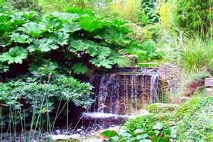 Waterfalls in home monte aloia nature park wallpaper monte aloia