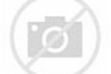 Image result for sumdog logo