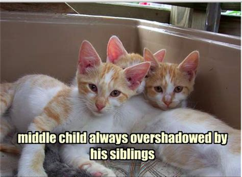 Middle Child Meme - 10 middle child memes every middle child will relate to