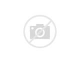 Business Domain Models Photos