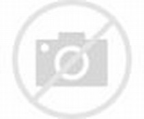 Human Body Skeleton Bones
