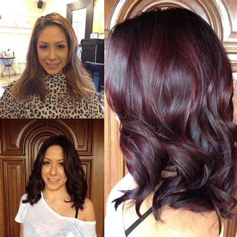 pinterest rich violets reds browns long hair best 25 violet brown hair ideas on pinterest plum brown