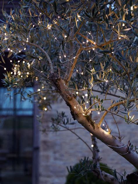 installation of fairy lights in trees 17 best ideas about lights in trees on backyards lights and