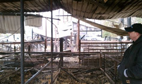 Conroe Isd Barn ffa news conroe isd ag barn destroyed in