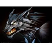 Download Werewolf Wallpapers Pictures Photos And Backgrounds