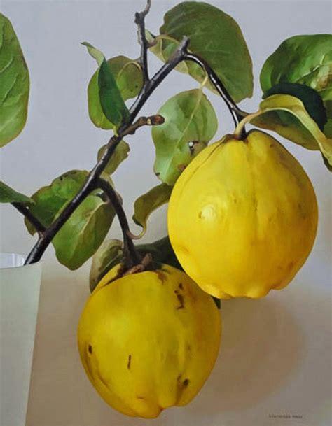 cuadros de oleo de frutas im 225 genes arte pinturas cuadros de frutas pinturas al 211 leo