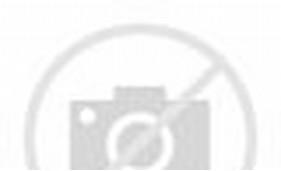 Cara Membuat Bunga Dari Plastik Bekas/page/2