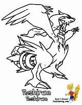 Reshiram Black And White Pokemon Coloring Page