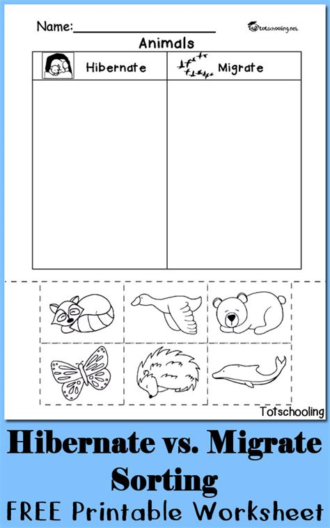 Kindergarten Activities On Hibernation | hibernation vs migration animal sorting worksheet
