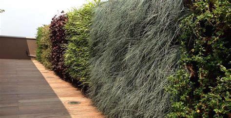 giardini verticali giardini verticali scopri i vantaggi della realizzazione