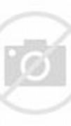 World's Biggest Flemish Giant Rabbit