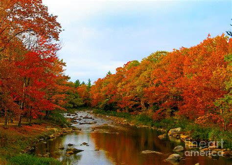 in fall fall river photograph by lloyd alexander