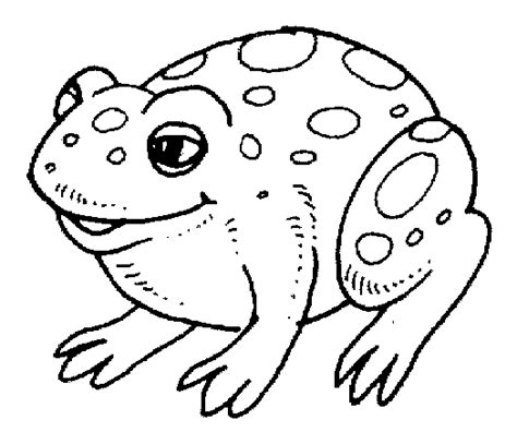more coloring a grayscale coloring book grayscale coloring books volume 70 books belly toad coloring page animals town animals