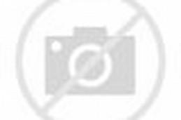 ... langkah selanjutnya yaitu langkah ke3 cara membuat bunga dari kertas