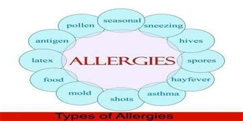 types  treatment  allergy assignment point