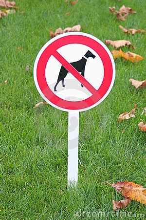 forbid for dogs sign forbid walk dogs royalty free stock photos image 11884188