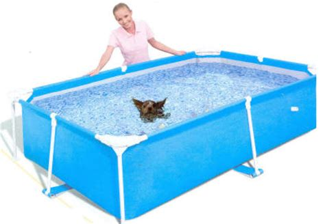 pools for dogs pools above ground pools for dogs
