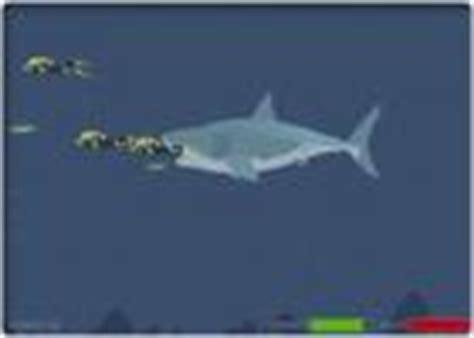 Gamis Maudy Syari sharks play free shark sharks downloads
