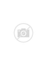 Crocodiles Coloriages Colorier