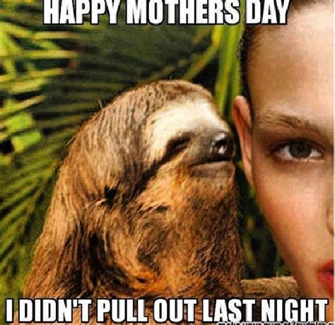 Sloth Jokes Meme - 131 best images about funny s on pinterest creepy