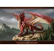 Dungeons &amp Dragons &171 Mirpgcom