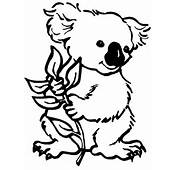 Koala Coloring Book Pages To Print And Color