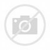 Gambar DP BBM Hijab Muslimah, Mari Berhijab