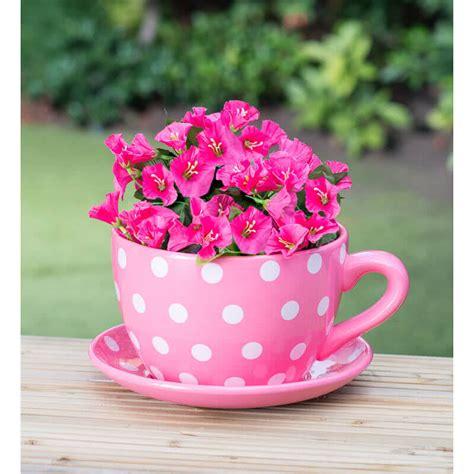 tea cup planter teacup garden planters miniature gardens
