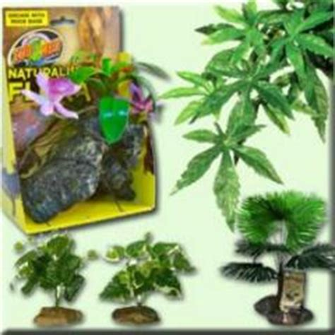 terrarium decor   plants