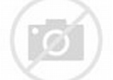 Animated Cartoon Jungle Scene
