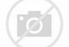 Contoh Alat Musik Tradisional Indonesia