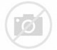 Little Girls Lying On Green Grass