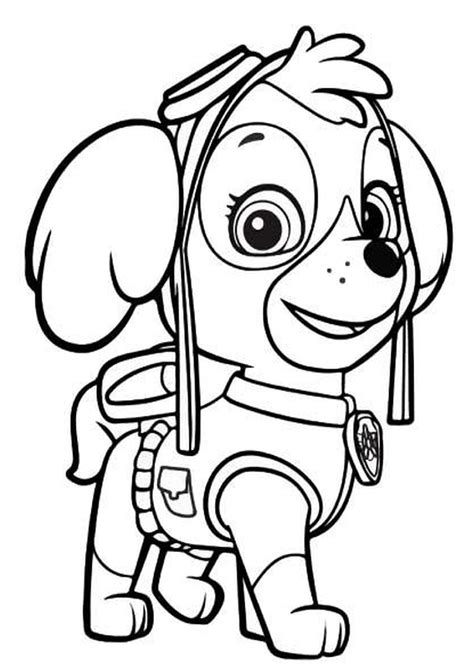 sky of paw patrol free colouring pages