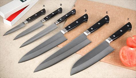 Stainless Steel Kitchen Knives Set by Japanese Kitchen Knives Lee Valley Tools