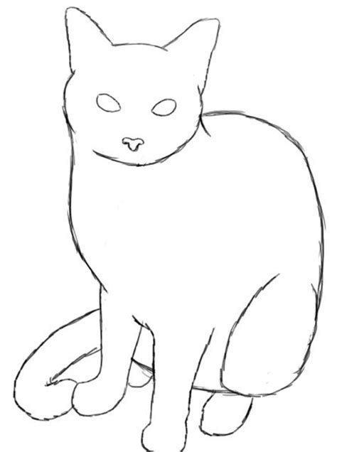 draw  cat drawing cat drawing cat sketch