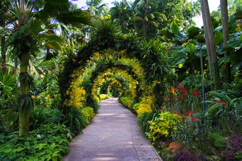 The Botanic Gardens Singapore The Singapore Botanic Gardens