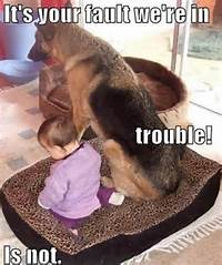 Funny Dog And Baby Meme  Dirty Adult Jokes Memes &amp Pictures