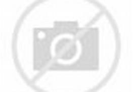 Pemandangan Air Terjun Yang Indah - Gambar Pemandangan