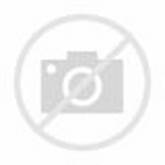 Railway And Forest. Stock Photo - Image: 61195360