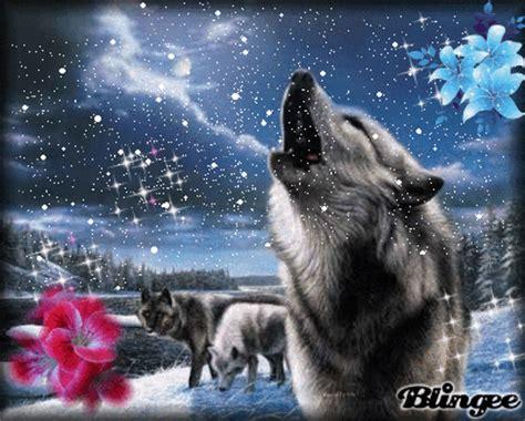 laste ned filmer hotel de grote l i m back with pretty wolves d read description