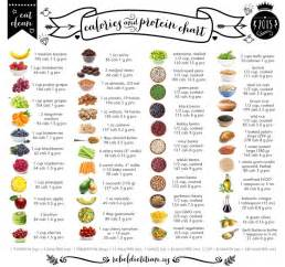 best 25 protein chart ideas that you will like on