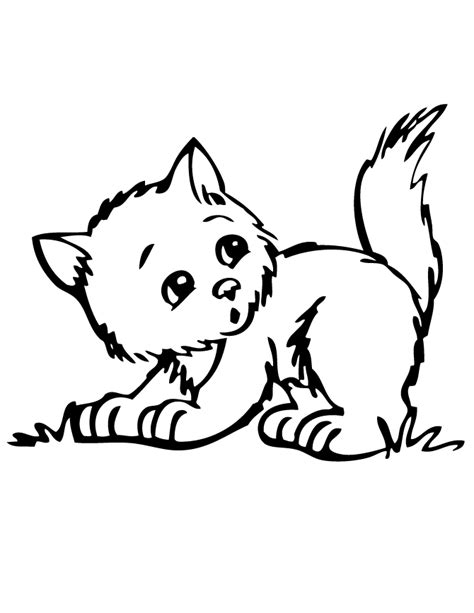 cute kitten coloring page h m coloring pages