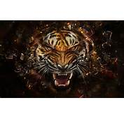 Angry Tiger Artwork Wallpapers Pictures Photos Images