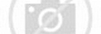 Henry Lever Action 22 Magnum