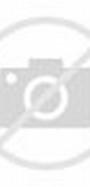 Dragon Ball Z Goku SSJ5